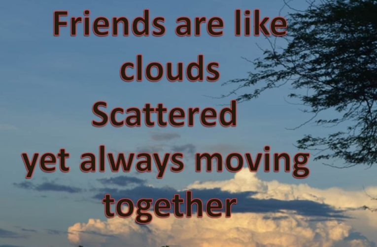 Best Friends Forever Quotes To Make you Cry and Smile