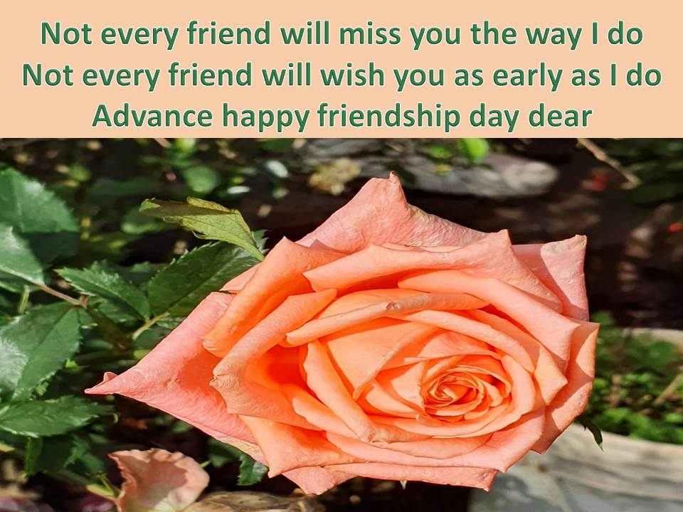 advance happy friendship day