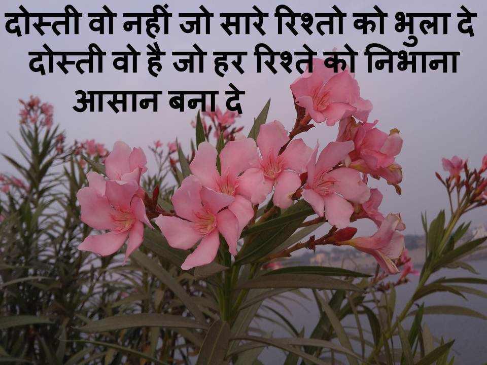 happy friendship day shayari hindi