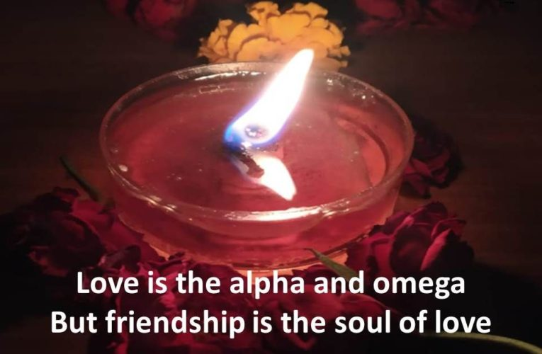 45 Friendship Love Quotes for Someone Special