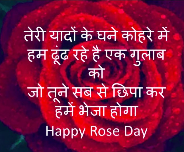 happy rose day images hindi