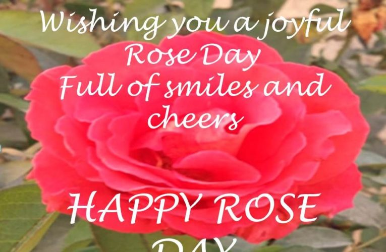 Rose Day Images for Friends to Wish Happy Rose Day 2021